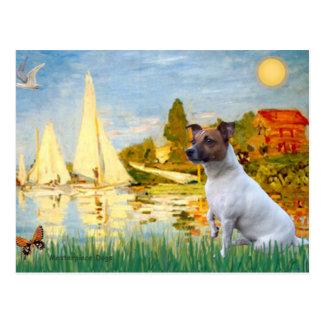 Jack Russell 6 - Sailboats 2 Postcard