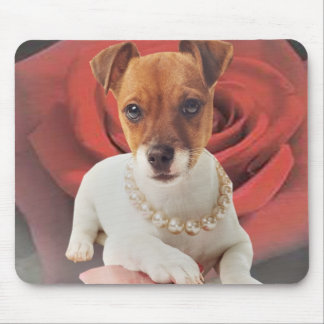 Jack Russell against rose Mouse Pad
