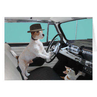 Jack Russell and Cat Driving Classic Car Card