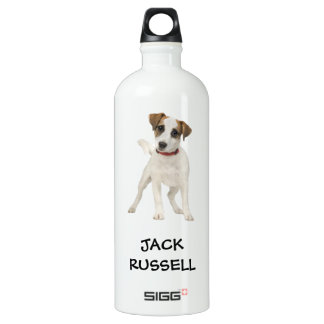 jack russell dog water bottle