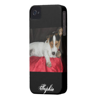 jack russell iPhone 4 cover