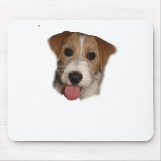 jACK RUSSELL Mouse Pad