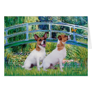 Jack Russell Pair 2 - Bridge Card