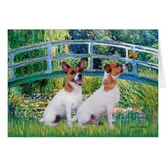 Jack Russell Pair 2 - Bridge Greeting Card