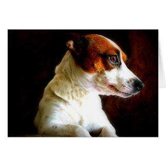 Jack Russell portrait Card