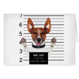 Jack russell prisoner card