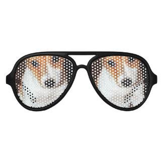 Jack Russell Puppy Aviator Sunglasses