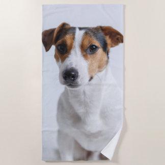 Jack russell terrer beach towel