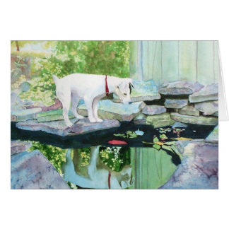 Jack Russell Terrier #1 Greeting Cards