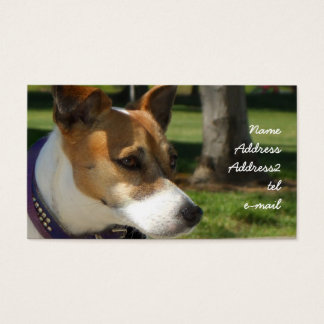 Jack Russell Terrier Business Card