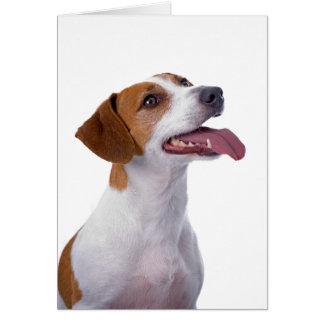 Jack Russell Terrier Friendship Card