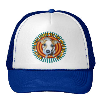 Jack Russell Terrier.Hat.