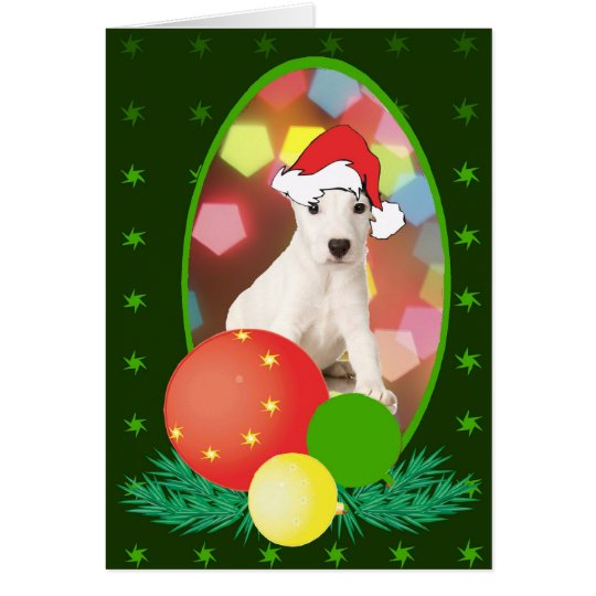 Jack Russell Terrier Ornaments Card