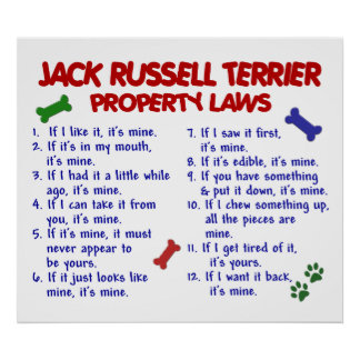 JACK RUSSELL TERRIER PL2 POSTER