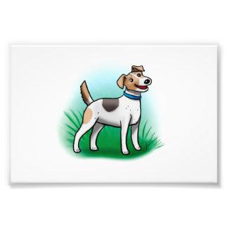Jack Russell Terrier Print Photograph