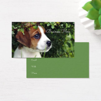 Jack Russell Terrier Puppy Adorable Dog Business Card