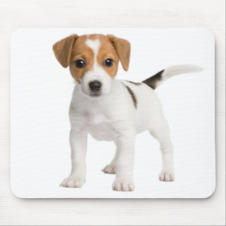 Jack Russell Terrier Puppy Dog Love Mouse Pad