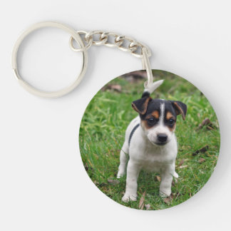 Jack Russell Terrier Puppy on Grass AcrylicKeyring Keychain