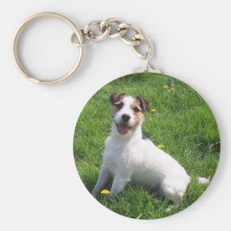 Jack-Russell_Terrier sitting in grass Basic Round Button Keychain