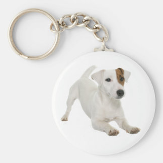 Jack Russell Terrier White And Brown Puppy Dog Keychain