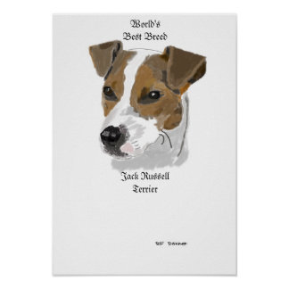 Jack Russell world's best breed Poster