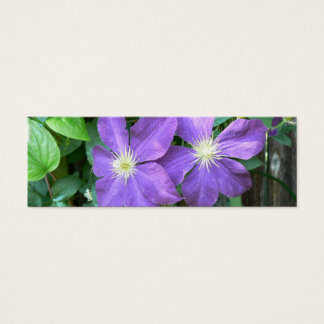 Jackmanii Clematis Mini Business Card
