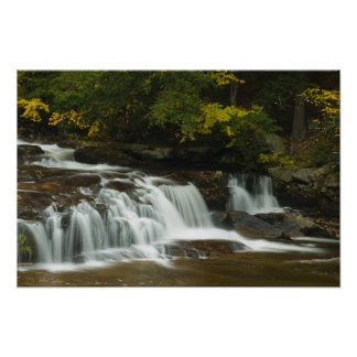 Jackson Falls, NH  Print