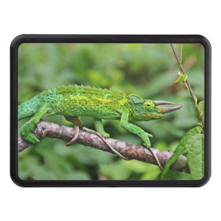 Jacksons Chameleon Trailer Hitch Covers