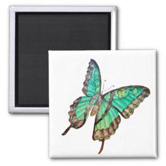 Jade Green Butterfly Magnet