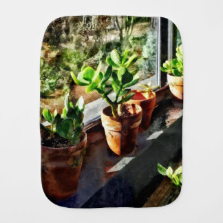Jade Plants in Greenhouse Burp Cloth