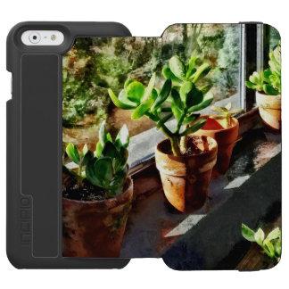 Jade Plants in Greenhouse Incipio Watson™ iPhone 6 Wallet Case