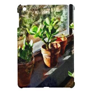Jade Plants in Greenhouse iPad Mini Cover
