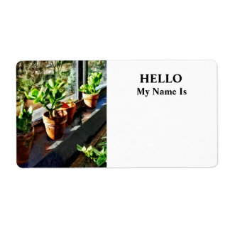 Jade Plants in Greenhouse Shipping Label
