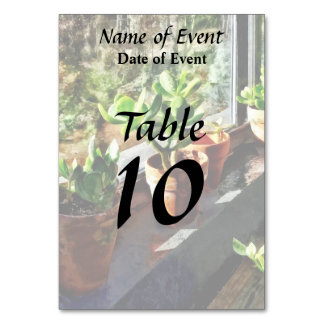 Jade Plants in Greenhouse Table Cards