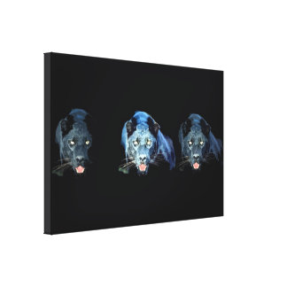 Jaguar - Black Panther Cat Wrapped Canvas