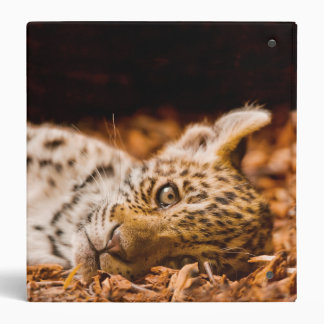 Jaguar Cub Lying in Foliage 3 Ring Binder