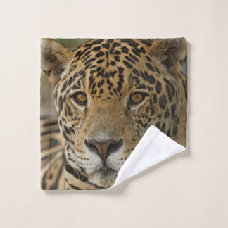 Jaguar feline portrait wash cloth