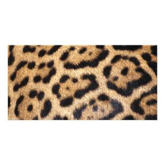 Jaguar Fur Photo Print Customized Photo Card
