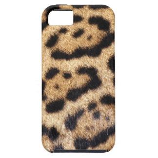 Jaguar Fur Photo Print iPhone 5 Cover