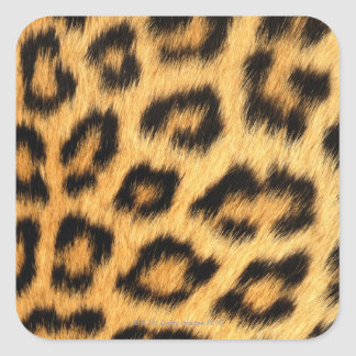 Jaguar Fur Square Sticker
