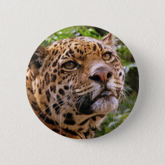 Jaguar Inquisitive 2 Inch Round Button
