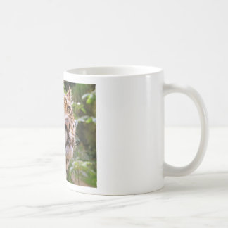 Jaguar Inquisitive Coffee Mug