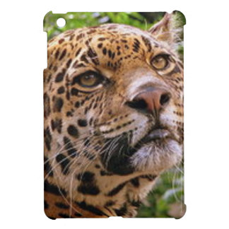 Jaguar Inquisitive iPad Mini Cover