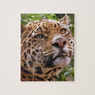 Jaguar Inquisitive Jigsaw Puzzle