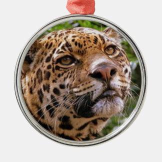 Jaguar Inquisitive Metal Ornament