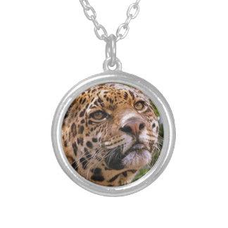 Jaguar Inquisitive Silver Plated Necklace