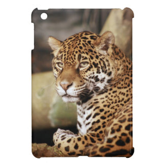 Jaguar iPad Mini Case