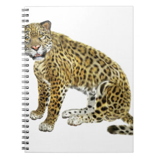 Jaguar Looking with Intent Spiral Note Book