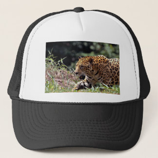 Jaguar (Panthera onca) Trucker Hat