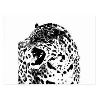 Jaguar Roaring Postcard